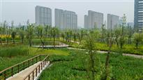 Ningbo Eco Corridor