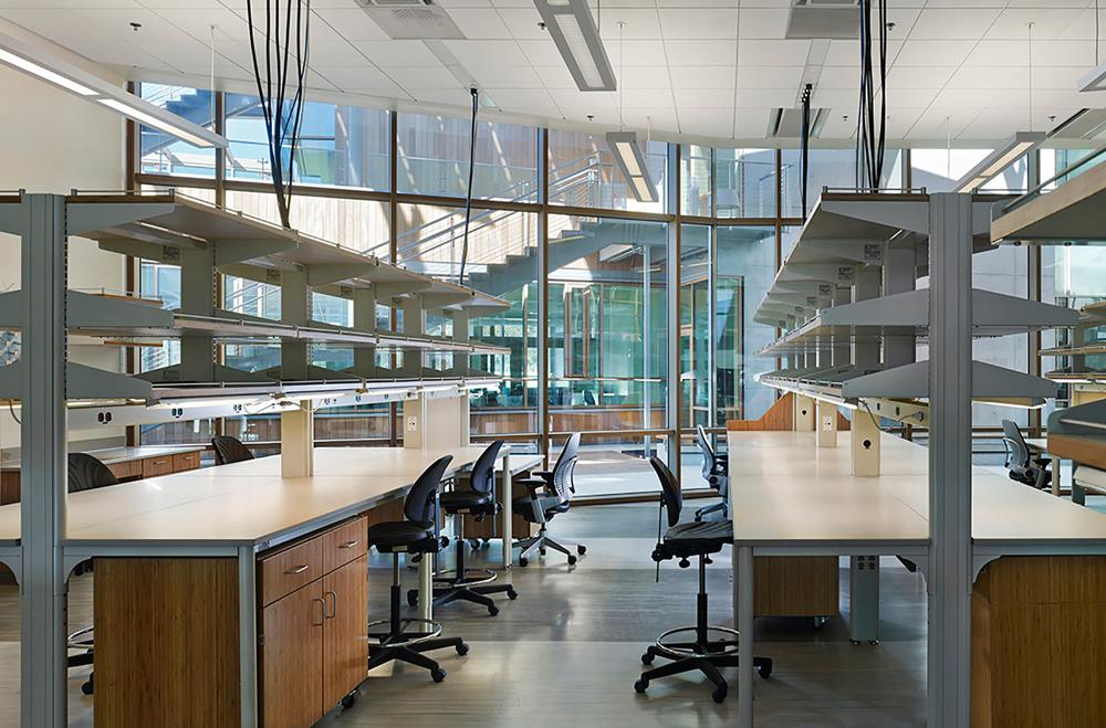 Thumbnail J.Craig Venter Institute / 6
