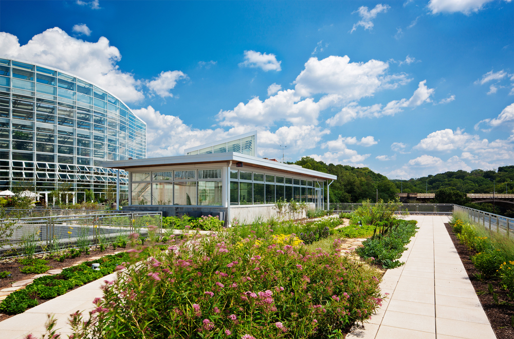Thumbnail Center for Sustainable Landscapes / 3